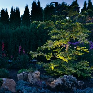 garden lighting services