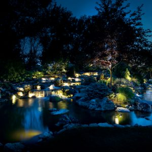 water lighting services in ann arbr